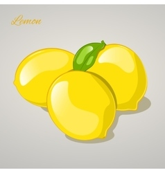 Cartoon sweet lemon on grey background vector image