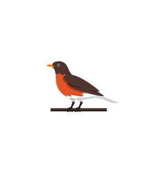 creative bird logo designs vector image