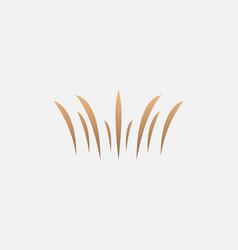 Creative luxury crown king spray explosion logo vector