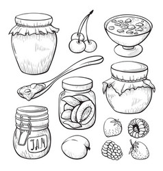 Fruit and berry jam hand drawn set vector