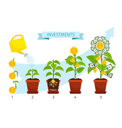 Investments process with money tree growing vector