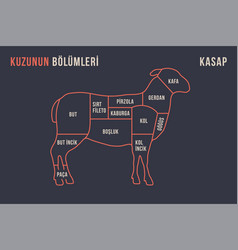 lamb or mutton cuts diagram butcher shop vector image