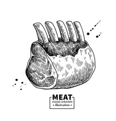 raw ribs drawing beef pork or lamb meat vector image