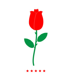 rose icon different color vector image