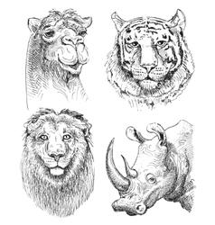 Set safari head animals black and white sketch vector