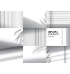 Shadow overlays for mockups vector
