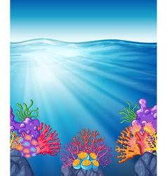 Scene with oean and coral reef underwater vector
