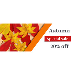 autumn special sale concept background realistic vector image