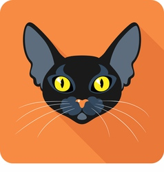 Bombay Black Cat icon flat design vector