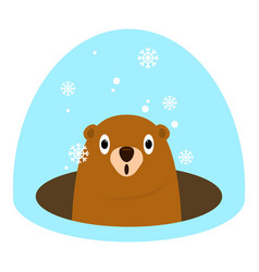 groundhog at winter icon flat style vector image