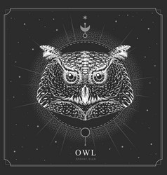 magic witchcraft card with owl zodiac sign vector image