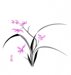 Orchid blossom vector