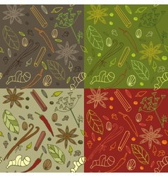 Spices kitchen pattern vector image