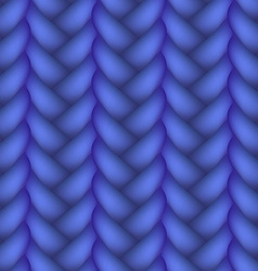 Woven Braid Seamless Pattern vector image