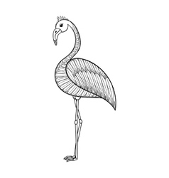 Coloring page with Flamingo bird zentangle vector image