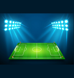 an of football soccer field with bright stadium vector image