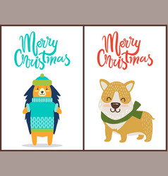 Merry christmas two bright congratulation posters vector