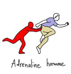 Metaphor function of adrenaline hormone vector