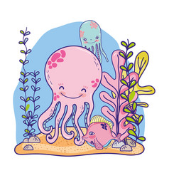 nice octopus sea animals with plants vector image