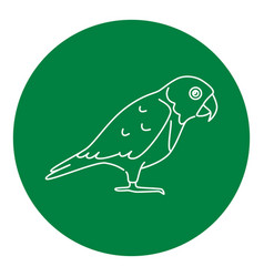 senegal parrot icon in thin line style vector image