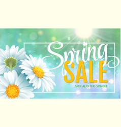 spring sale concept summer background vector image