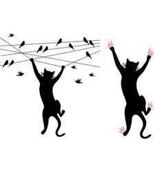 Black cat climbing birds on wire vector