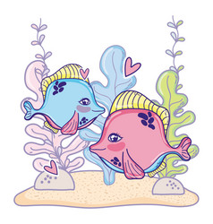 cute couple fishes animal with seaweed plants vector image