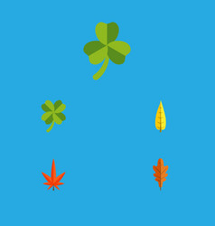 Flat icon leaves set of maple leafage leaf and vector