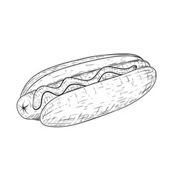 hot dog hand drawn sketch isolated on white vector image vector image