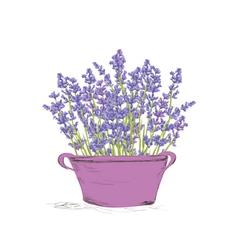 Seamless lavender pattern vector