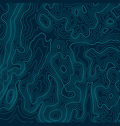 abstract a topographic map pattern made vector image