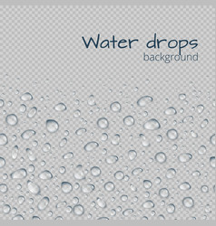 Background with drops of water vector