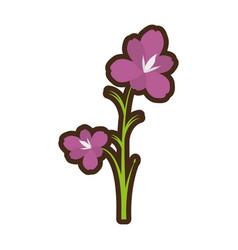 Cartoon amaryllis flower decoration beautiful vector