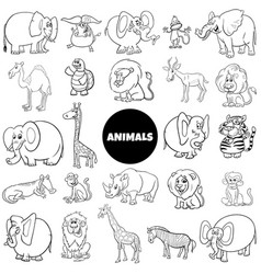 cartoon animal characters large set color book vector image