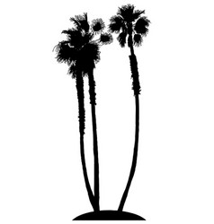 palm trees on island silhouette vector image
