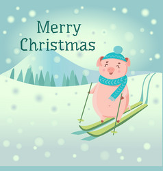 piglet in hat and scarf skiing with snow mountain vector image