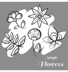 Set Magic Flowers On Gray vector image