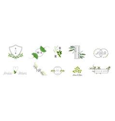 wedding monogram logos collection floral template vector image