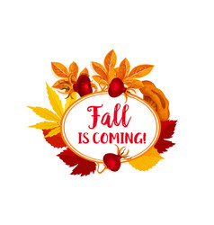autumn berry for fall is coming poster vector image