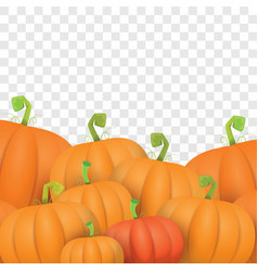 Autumn orange pumpkins border design vector