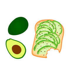 Avocado toast sliced avocado on toast bread vector