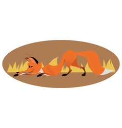 Cute sly fox vector image