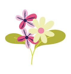 decorative flowers bouquet leaves ornament vector image