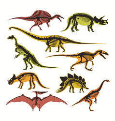 Dinosaurs skeletons and silhouettes flat vector