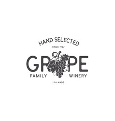 family wine shop winery logo template concept vector image