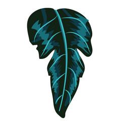 tropical leaf plant vector image