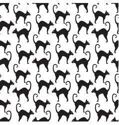 black cat seamless pattern cats repetitive vector image vector image