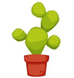 Cactus cartoon vector image vector image