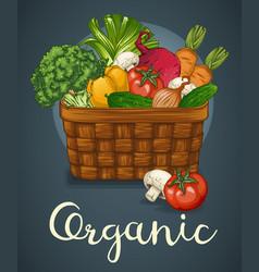 basket of fresh vegetables poster vector image vector image