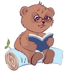 Bear reading book vector